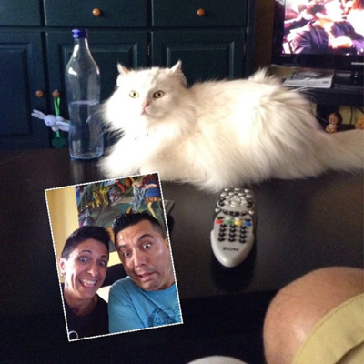 Zanny selfie with a cat and two men