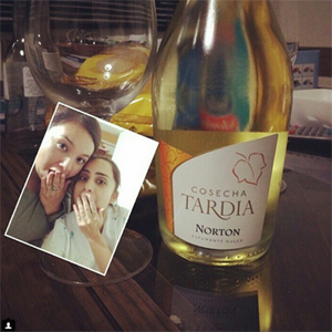 Funny selfie with two girls and a bottle of wine