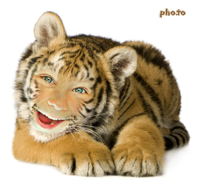Turn yourself into a funny tiger online