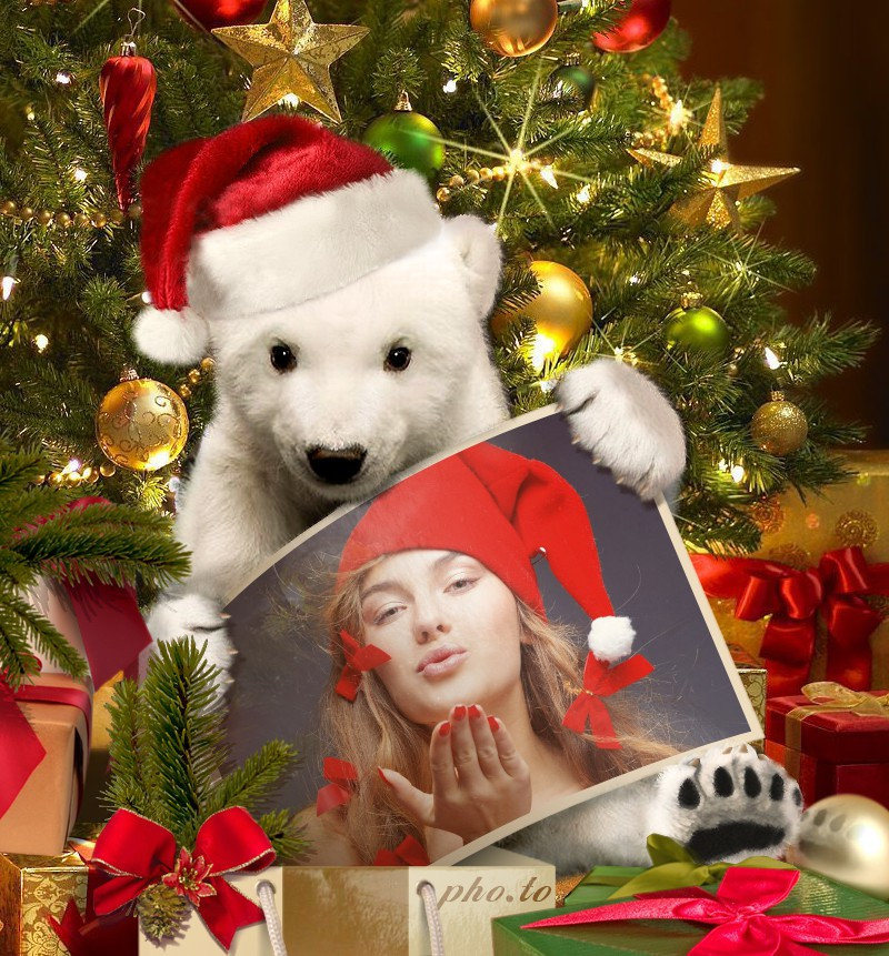 A Christmas photo frame which renders your photo into a new surrounding with white polar bear toy