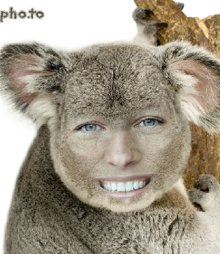 Turn yourself into funny koala with this free online face photo montage