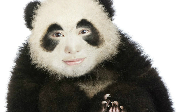 Turn yourself into realistic panda with this face photo montage