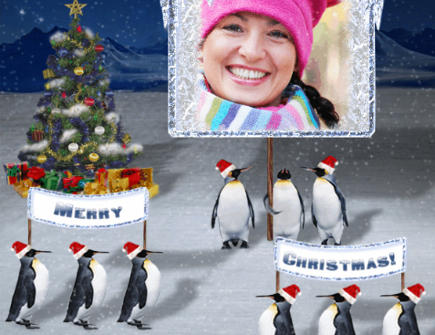Funny Christmas frame with penguins celebrating winter holidays
