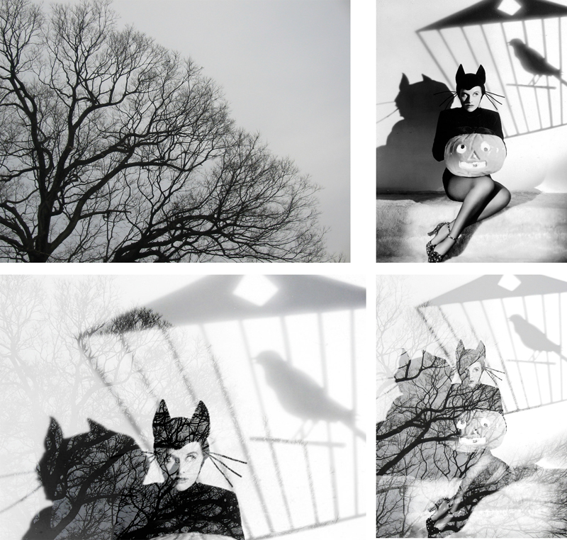 Artistic black and white photo portrait of a cat woman created with online double exposure effect