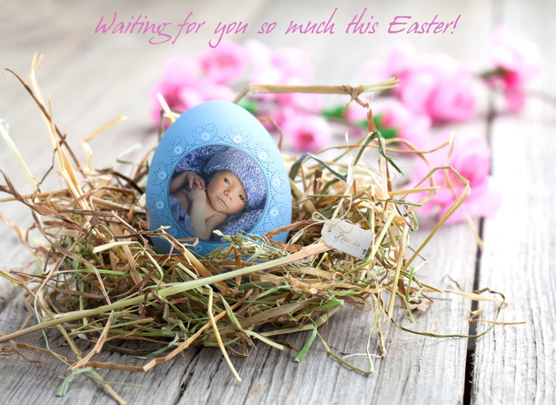 An DIY Easter egg photo card