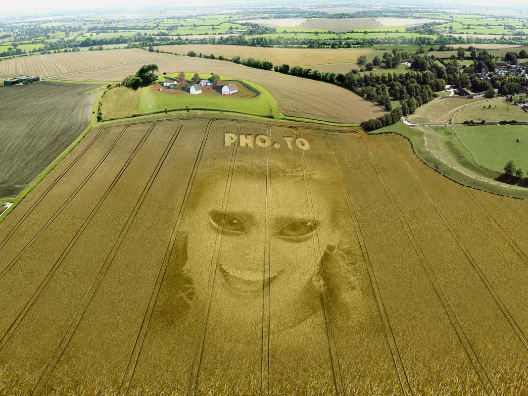 Make an UFO to draw you portrait on a crop field with this realistic photo montage