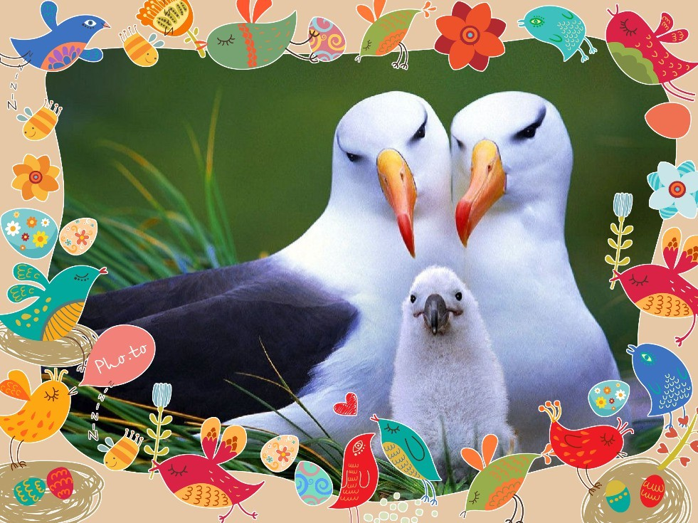 A greeting card for Mother's day showing a birds family