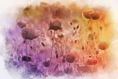 Turn your photo into a stylish watercolor in warm colors