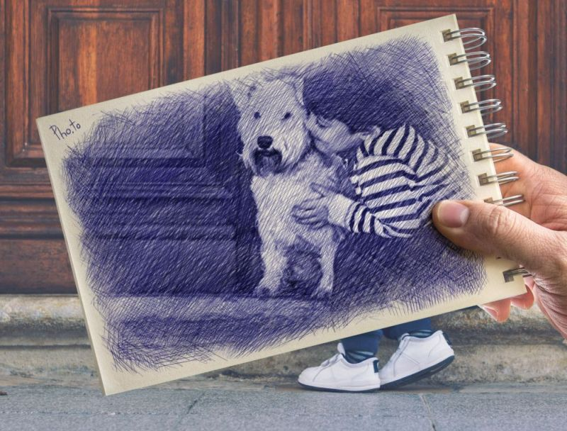 Convert your photo into an original ballpoint pen drawing