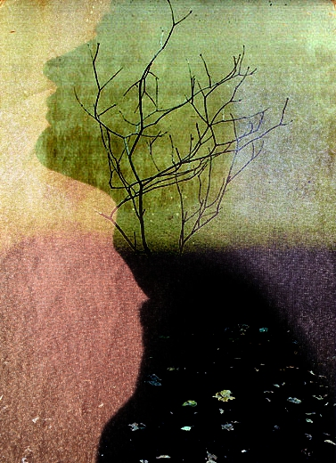 Online double exposure effect is used to blend two images together