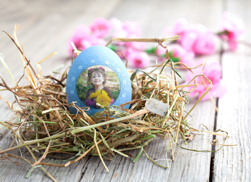 Easter photo card with colored egg and spring flowers