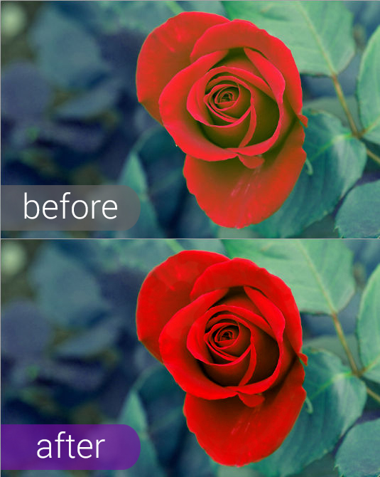How to enhance color on a photo with the red rose flower online and with ease