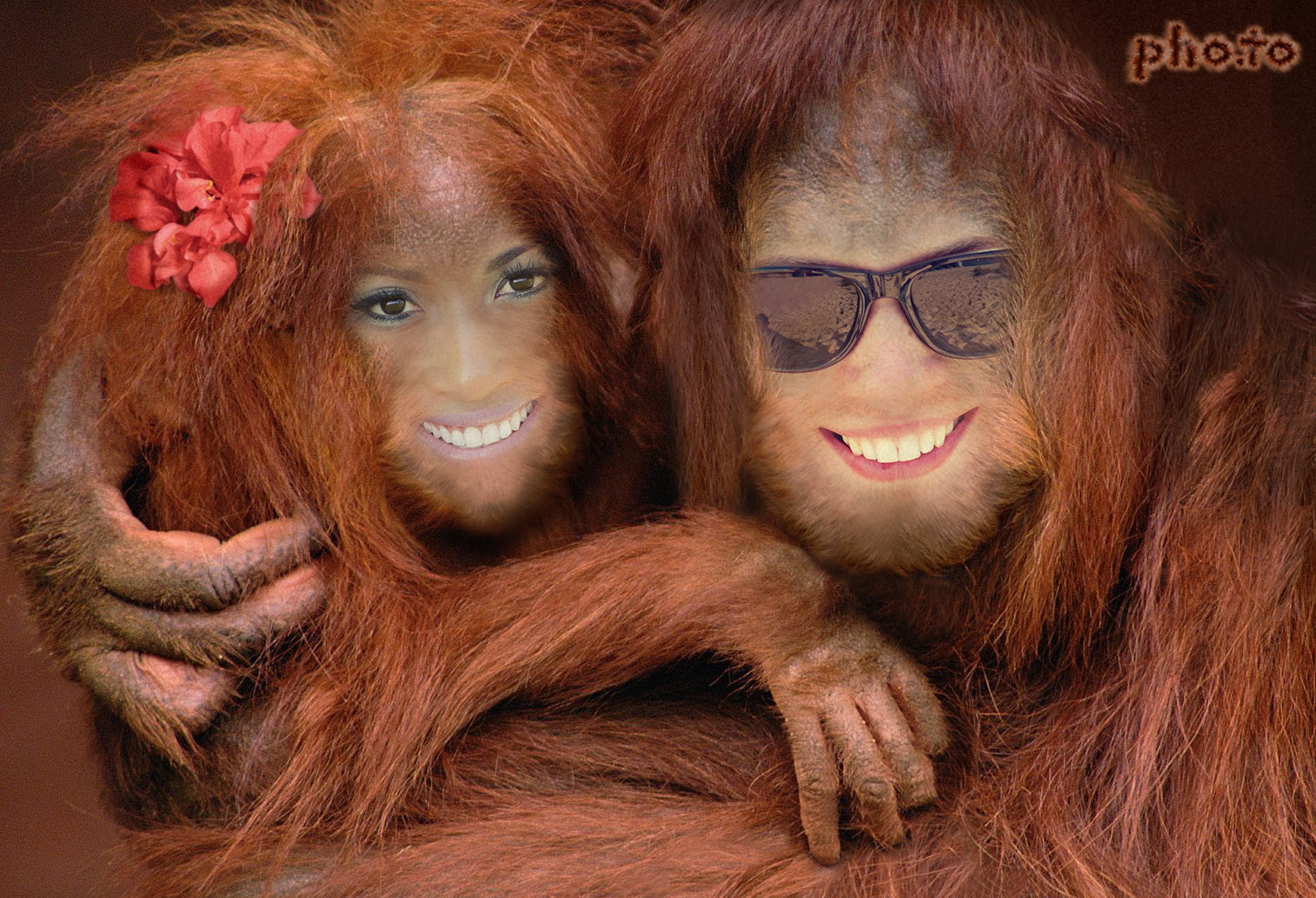 Face in hole photo effect with happy couple turned into a a couple of red apes