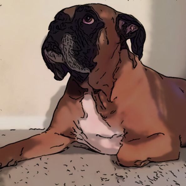 Cartoonized photo of a big kind dog