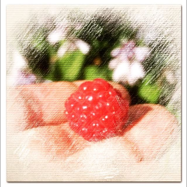 Turn your photo of a raspberry into a crayon sketch