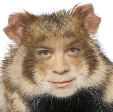 A human to animal photo montage lets a guy to be turned into a humanoid hamster